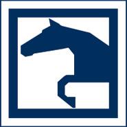 Krämer Pferdesport 3