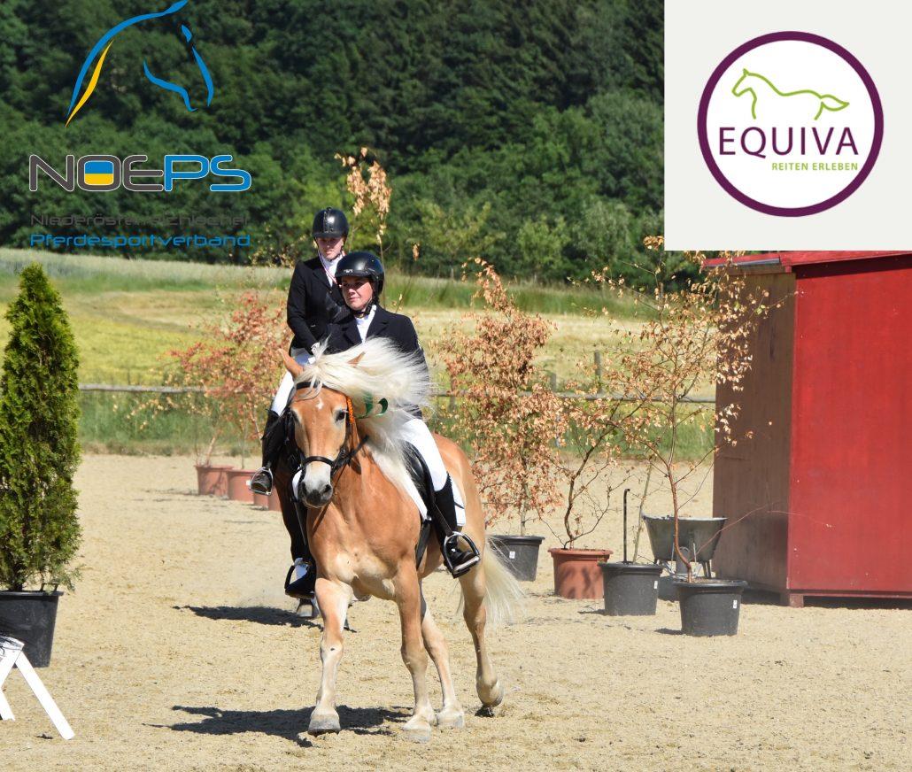 Katharina Die Große Pferd Gestell: Diashow: Teil 2 Des EQUIVA Kleinpferdecups Am Gurhof