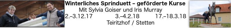 Springduett Tablet