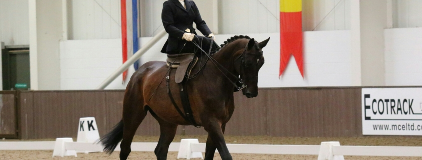 Herzlich Willkommen, Nicole Heinisch! Sie leitet ab sofort das NOEPS Referat Damensattelreiten. © privat
