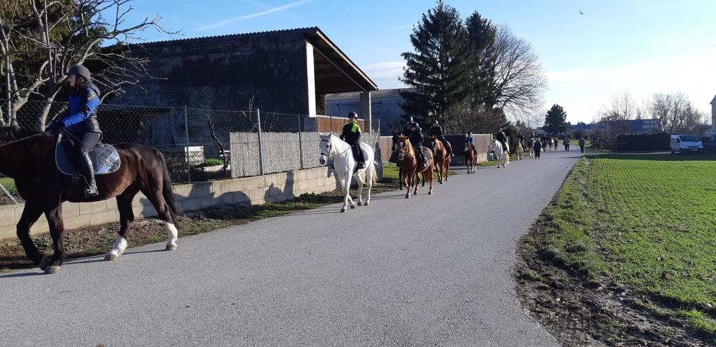 Impressionen vom Stephani-Ritt in Gallbrunn. © privat