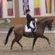 Sieg in der Kleinen Tour (68,553%) für die Niederösterreicherin Julia Dornig-Coppard und Dancing Hit. © Istvan Lehoczky