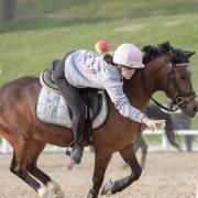Chiara Földi vom Pferdesportzentrum Breitenfurt (NÖ) holte sich gemeinsam mit Sarah Kermer (B) den Sieg in der ÖM Pairs Allgemeine Klasse. © Gottfried Horner