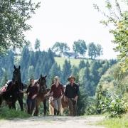 """""""Entschleunigung auf vier Hufen"""" im Pferdereich Mühlviertler Alm. © Pferdereich/ Erber"""