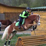 43 VS-ReiterInnen trafen einander in Aspang um mit Biggi Keiblinger für die neue VS-Saison zu trainieren. © privat
