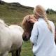 TV-Tipp: Die faszinierende Geschichte von Pferd und Mensch. © pexels.com