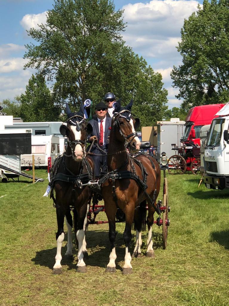 Platz 8 für Niederösterreichs Erwin Gillinger beim int. Zweispännerturnier der legendären Royal Windsor Horse Show. © privat