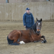 Impressionen vom Kurs mit Wolfgang Hellmayr im Pferdehaus Katharina in Gföhl (NÖ). © privat