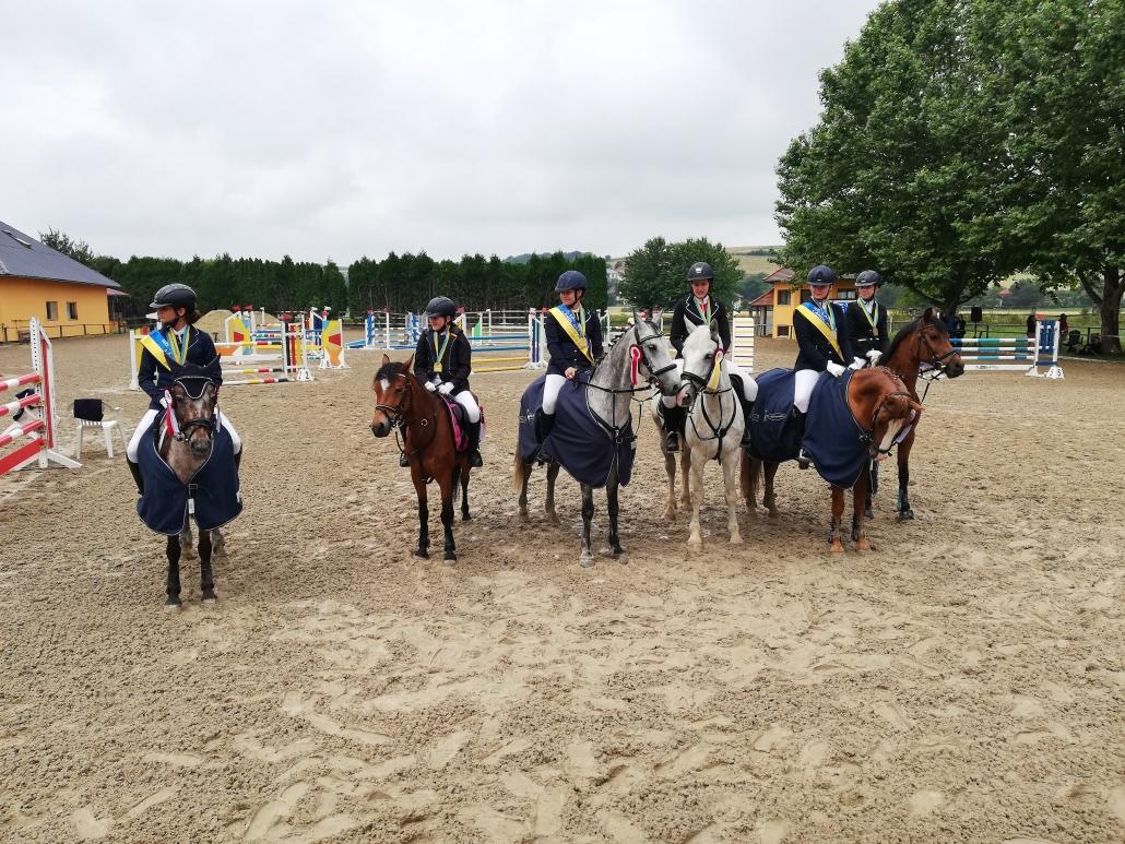 Für die Ponyreiter gab es Ländliche NÖ Landesmeisterschaften in drei Klassen: B-Pony, Jugend und Kinder. © privat