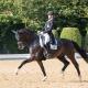69,870% für Karoline Valenta und Valenta's Diego im CDI4* Grand Prix von Achleiten. © Michael Rzepa