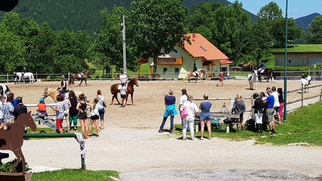 Impressionen von der erfolgreichen Sonderprüfung am Halmerhof in Puchberg. © privat