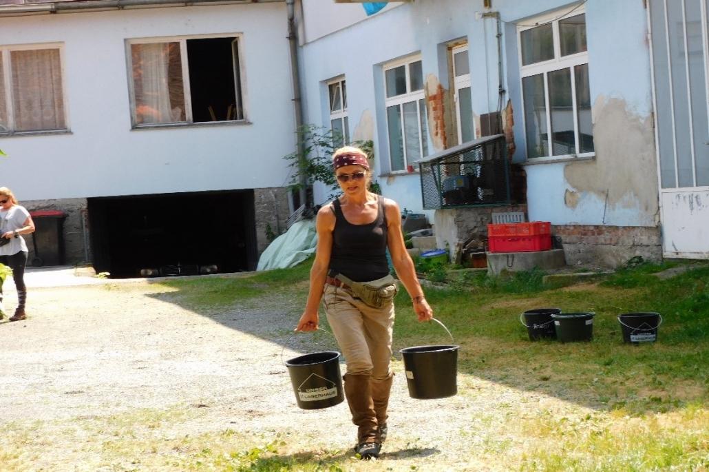 Wanderreiten vom Mittelburgenland in die Steiermark: Ein Bericht von Edith Leitner | Tag 02. © privat