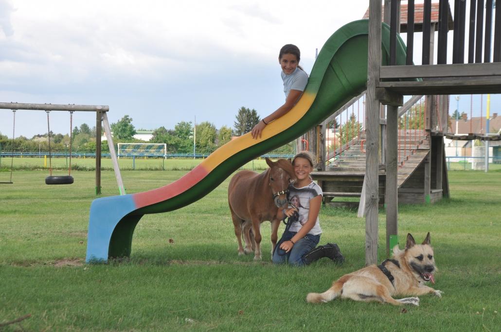 Dank Wiesje & Co. war der Pferdeerlebnistag im RV Breitensee ein voller Erfolg. © privat