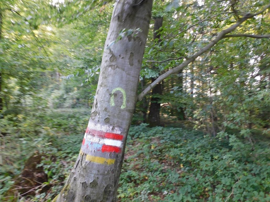 Reitwegemarkierungen im Biosphärenpark Wienerwald. © privat