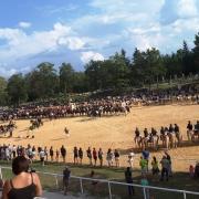 Die große Meisterschaftsehrung bei der Jubiläumsveranstaltung der Ländlichen in Stadl Paura. © Pferdezentrum Stadl Paura