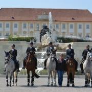 Working Equitation Austria zu Gast beim Pferdefest auf Schloss Hof. © Walter Wurdack | Working Equitation Austria