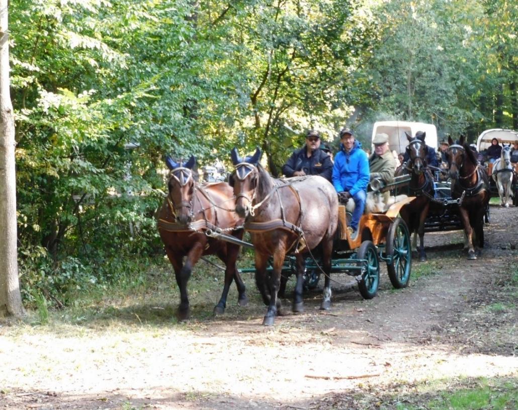 Pünktlich kommen aus allen Richtungen Ein- und Zweispänner, Reiter und Spaziergänger.