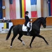 Sabine Panis und Welpere wurden mit 67,588% Dritte im Bartlgut Cup Kleine Tour im High Class Horse Center Weikersdorf. © Istvan Lehoczky