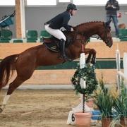 Pilothaga wurde unter Patrick Prömer Racino Herbst-Championesse der fünfjährigen Pferde. © HORSIC.com