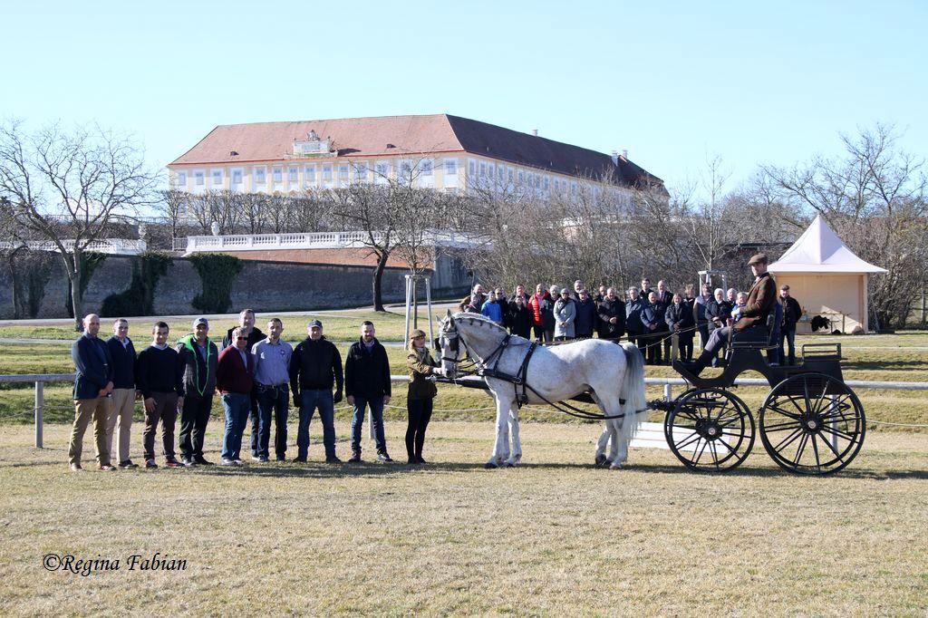 FEI Fahrkurs mit renommierten Vortragenden in Hainburg & Schlosshof.  © Regina Fabian