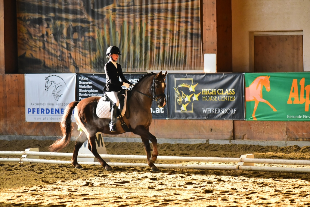 Helene Szuchanek mit ihrem New Forest Pony Nieland's Lucky. © Istvan Lehoczky