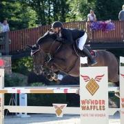 Der 10-jährige Ben-Hardy verdiente sich unter Michael Viehweg mit Siegen und Platzierungen bis 3-Sterne-Niveau den Titel bestes österreichisches Springpferd 2019. © iSPORTPHOTO