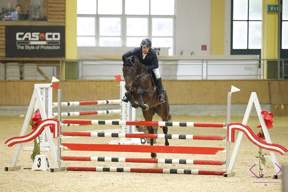 Bundeschampion der fünfjährigen Springpferde wurde der in NÖ von Gerhard Wippl gezüchtete Staphael  III v. Stakkato Gold unter Lukas Brodtrager (ST). © Team Myrtill
