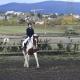 Herzlichen Glückwunsch zur bestandenen Reiterpaßprüfung. © Reitclub Team Lindenberghof