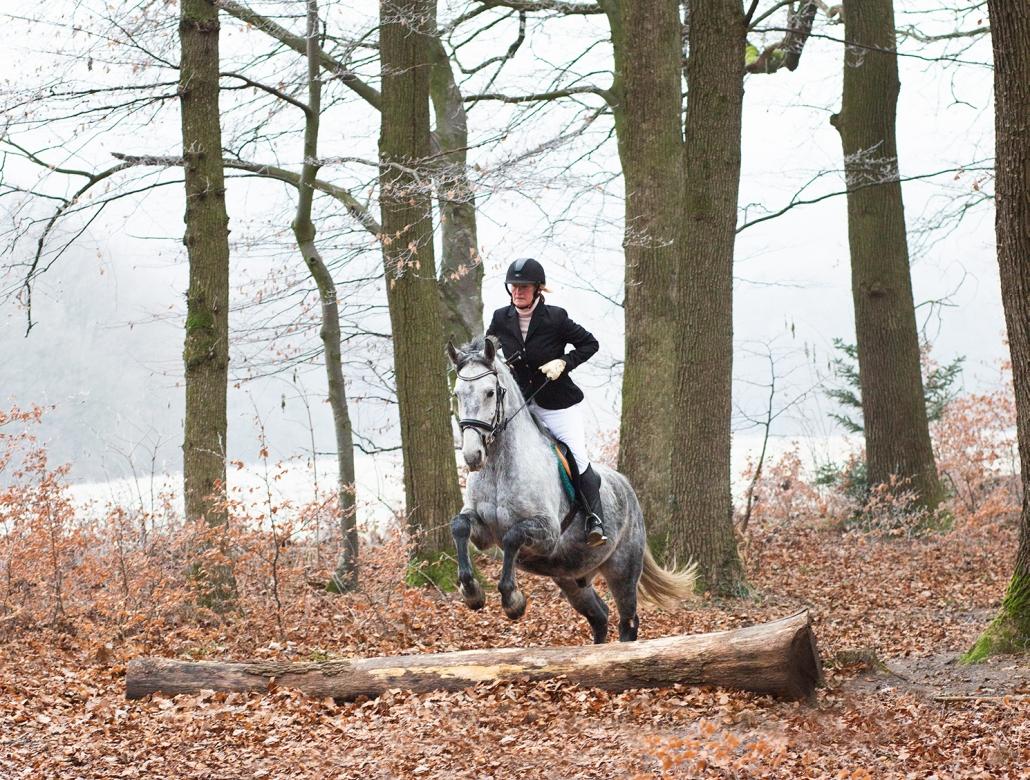 Ludmila Spiegelfeld, Präsidentin des Reit- und Fahrclubs Gut Aichhof ritt und sprang im Wienerwald ins Jahr 2021. © privat