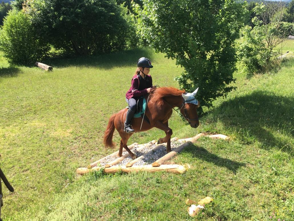 Erfolgserlebnis für Pferd und Reiter. © privat