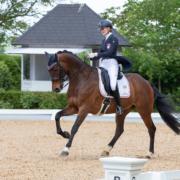 Platz 3 für Elena Erbstein (NÖ) und Larifari (68,627) im Young Rider Individual Test in Achleiten. © CDI Achleiten