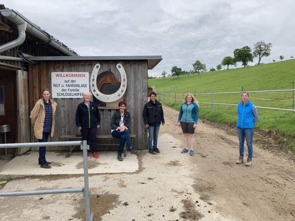 Pferdesamariterausbildung in Allhartsberg. © privat